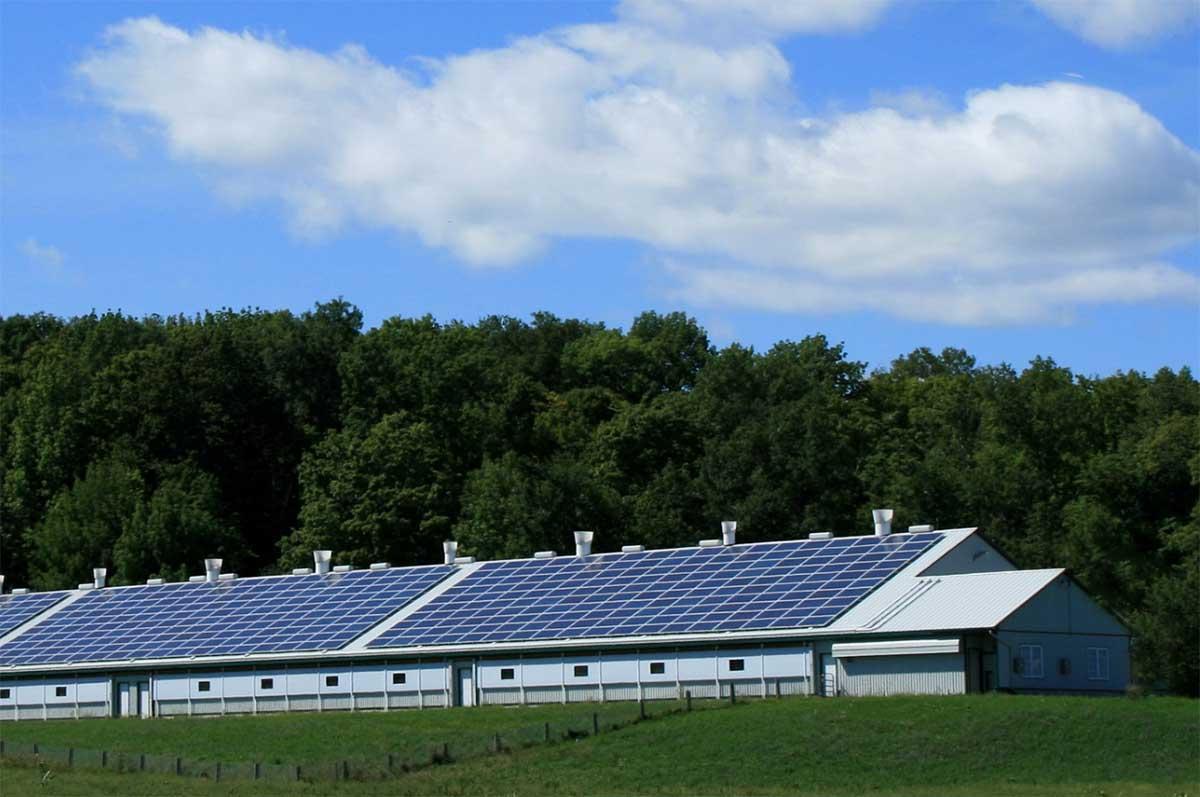 energia solar en pymes paneles solares efc