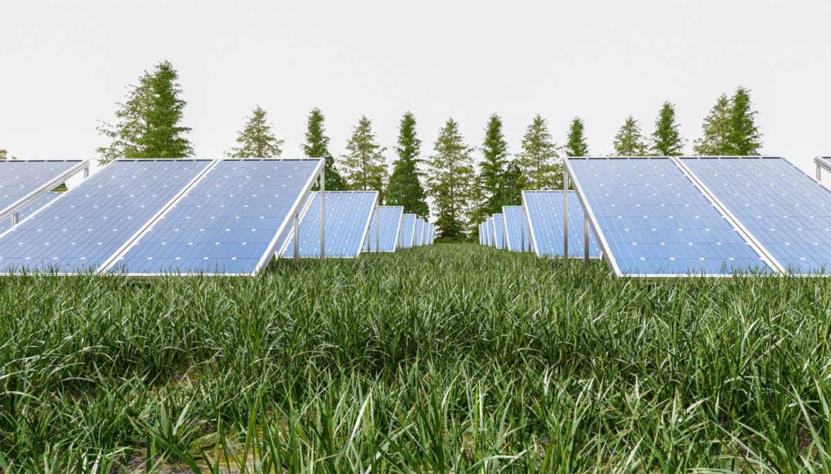 como funcionan las placas solares fotovoltaicas